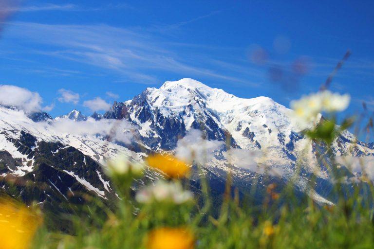 tour monte bianco fiori